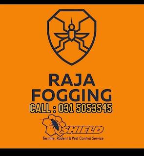 Raja Fogging