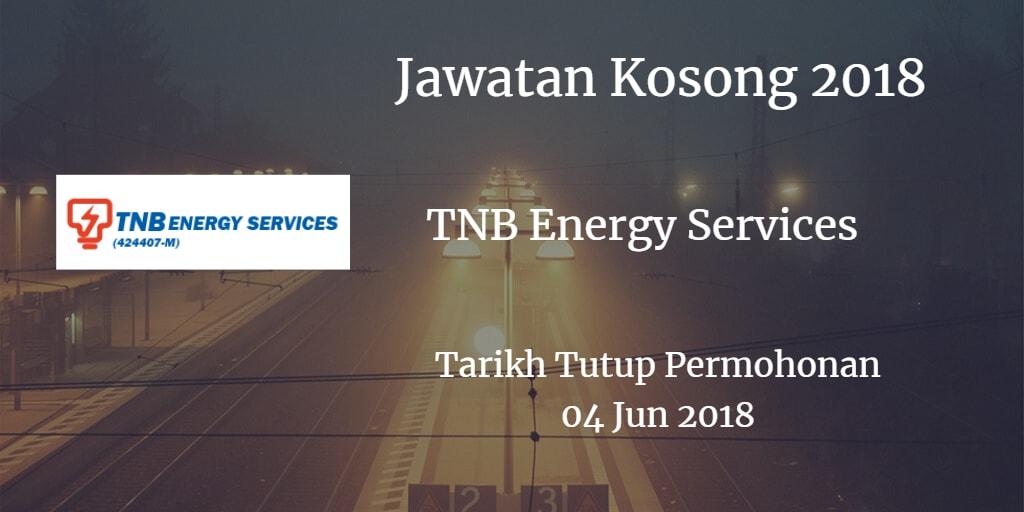 Jawatan Kosong TNBES 04 Jun 2018