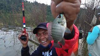 mancing nila waduk jatibarang semarang, Di Kabupaten Semarang terdapat  spot pancing yang asik dikawasan wisata gua kreo. Bagi anda penggemar mancing, spot mancing yang satu ini bisa menjadi rekomendasi