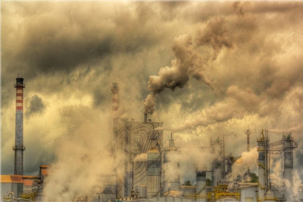 As celulosas de Pontevedra, son unhas fábricas de papel que contaminan moito