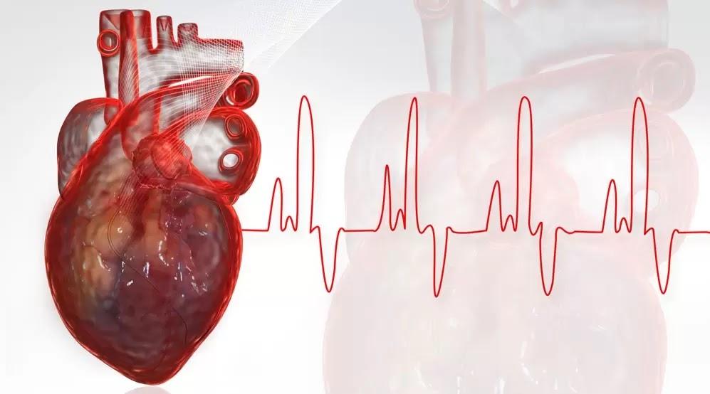 80% Dos Ataques Cardíacos Poderiam Ser Evitados se Todos Fizessem Essas 5 Coisas Simples