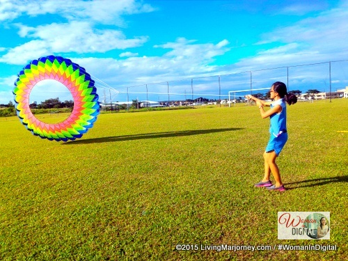 Kite Flying Festival 2016