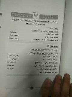 نموذج إجابة امتحان اللغة العربية للثانوية العامة 2019 دور أول 10