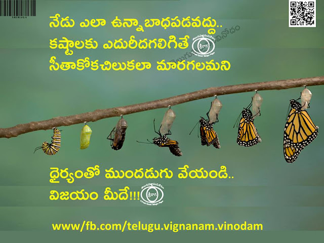 Inspirational Stories in Telugu 11