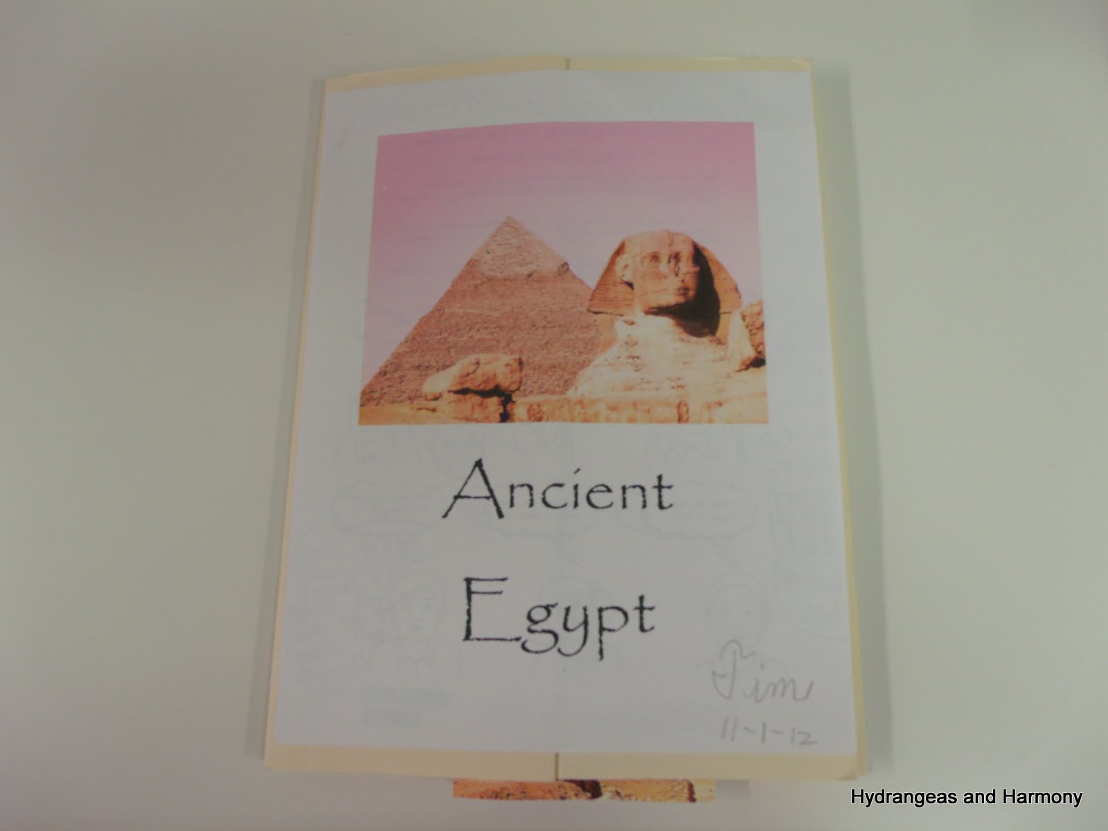 Hydrangeas And Harmony School Days Summary Egypt