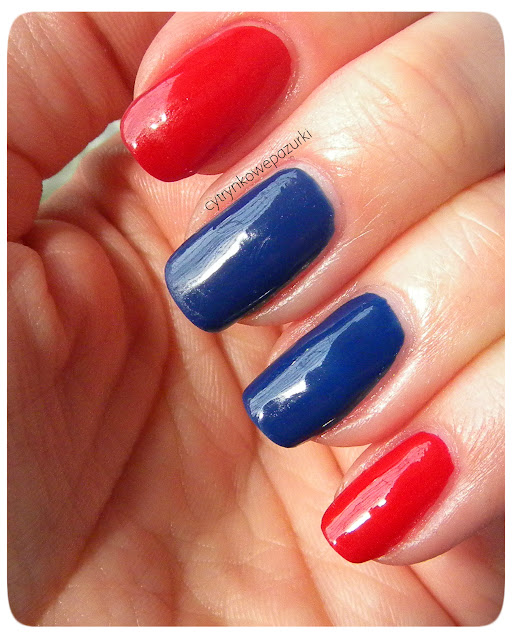 Pierre Renne 304 Excentric Cobalt i 42 Monroe Red