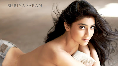 shriya saran south indian actress hd wallpaper 004,Shriya Saran HD Wallpaper