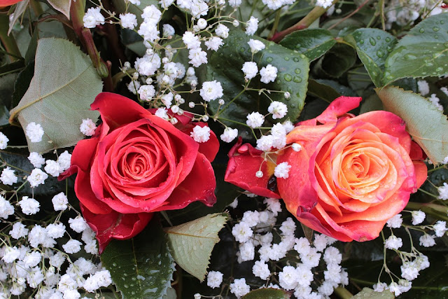 bouquet-gypsophila%2Band%2Broses.jpg