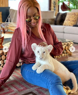 Dj Cuppy gets a cub as pet, she hopes it turns into a beautiful Lion 'Photos'