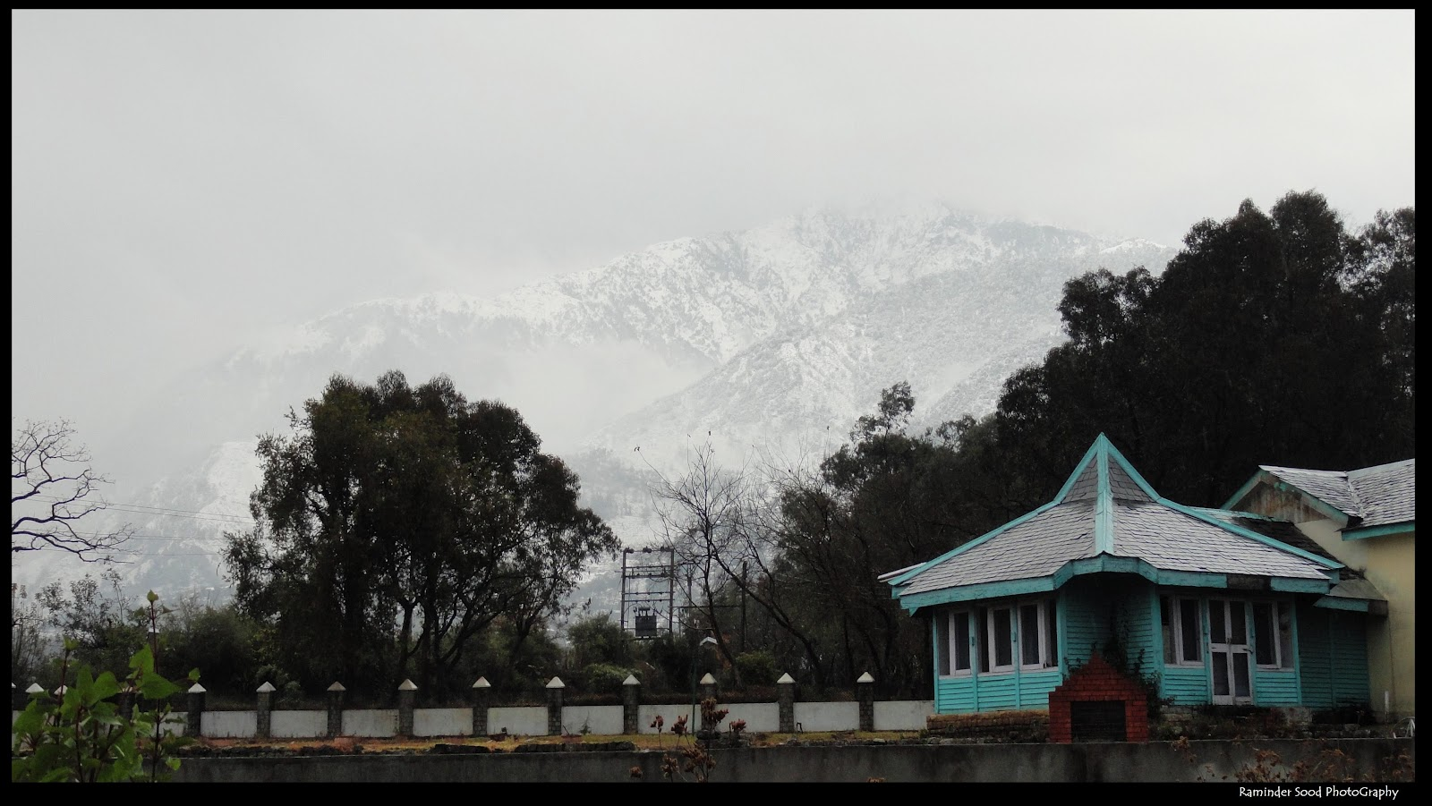 interest place in palampur