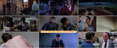 Rebeldes (1983) The Outsiders,