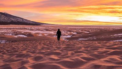 Desert, Lonely man, Sand, Beach, Sunset