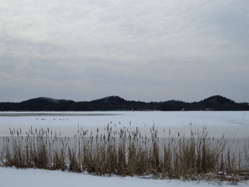 Three Sisters Bass Lake