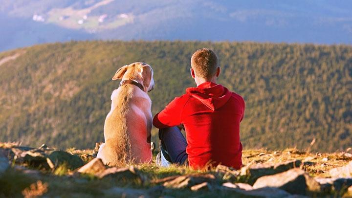 thru-hiking-with-a-dog