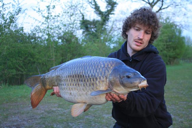 Charlton Carper: Birds Green Fishery, Essex 'Short Blog Entry'