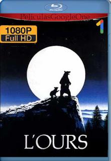 The Bear (L'ours) (1988) [1080p BRrip] [Inglés] [LaPipiotaHD]