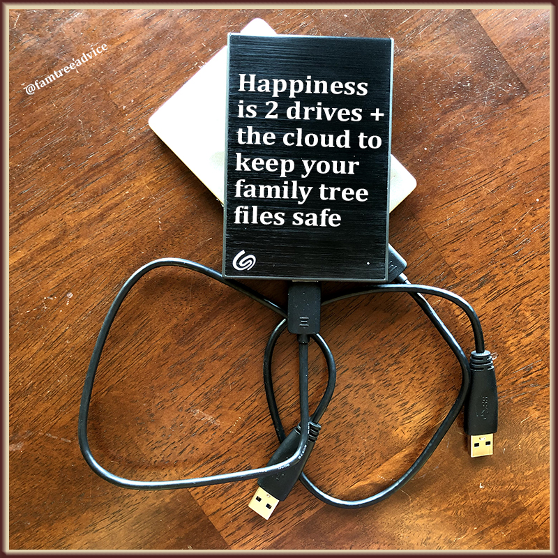 External storage drives keep coming down in price. Don't short-change your family tree files.