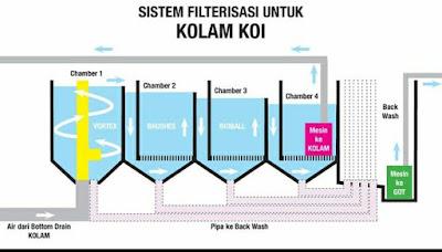 Filterisasi Kolam