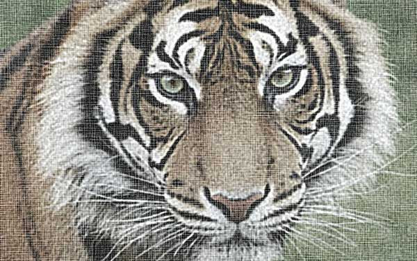 Canvas Texture Imitation