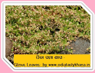 Brought to you by www.OdiaTastyKhana.in