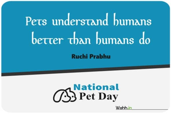National Pet Day Quotes