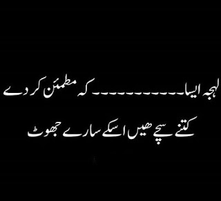 funny urdu quotes 09