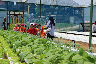 Wisata edukasi kebun Pak Budi Pasuruan