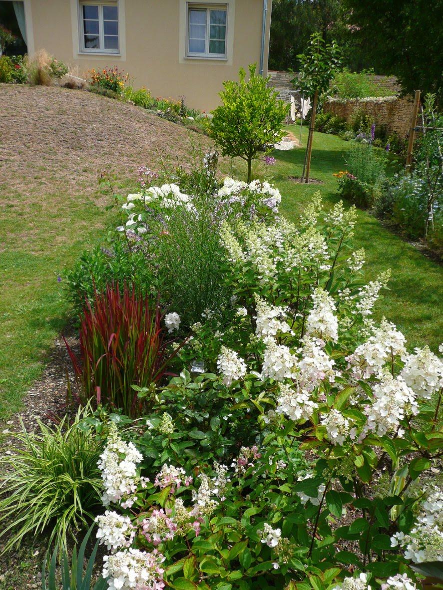 Notre Jardin Secret Hydrangeas Paniculatas