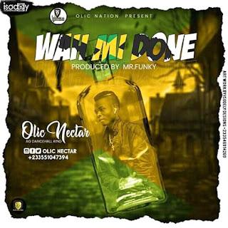 Olic Nectar - Wah Mi Done (Prod. By Mr. Funky)