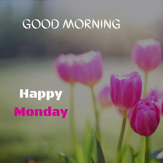 good morning monday images hd free download
