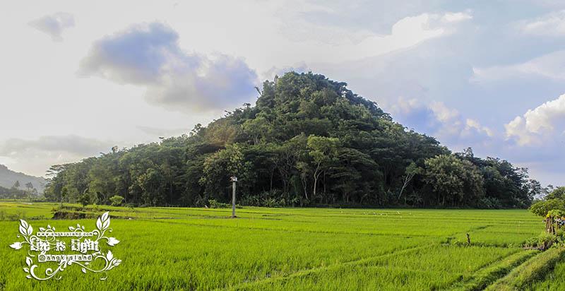 bukit gedang