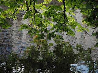 Reflexos damunt l'aigua (Trädgårdsföreningen - Göteborg) per Teresa Grau Ros