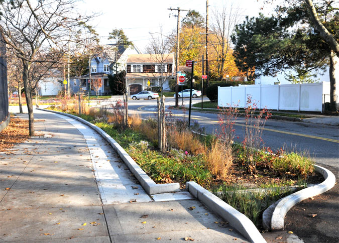 Bioswale A Solution To Pollution