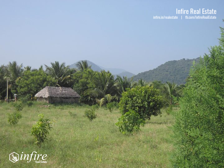 6 Acre Agriculture land For Sale at Palamedu, Madurai, Tamil Nadu