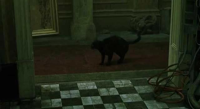 Dejavu siyah kedi - Matrix