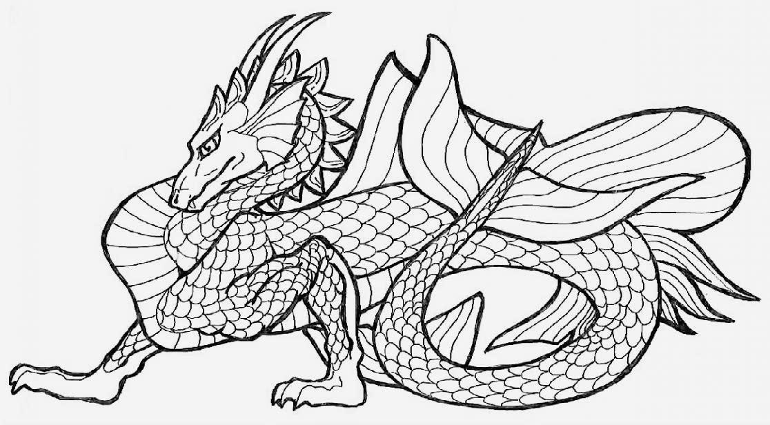 dragon coloring sheets free coloring sheet