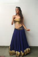 Malvika Raaj in Golden Choli and Skirt at Jayadev Pre Release Function 2017 ~  Exclusive 067.JPG
