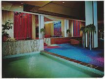 Original Disneyland Hotel 70' Colorful Shots