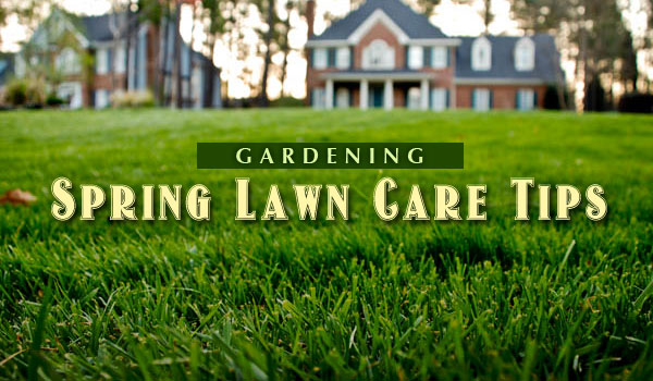 early spring lawn care tips - 600×350