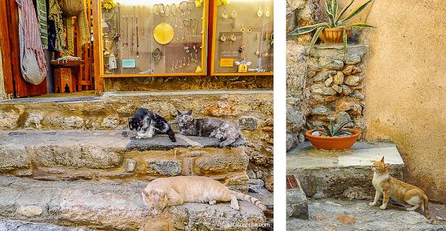 Gatos nas ruas de Monemvasia, Grécia