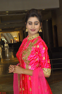 Shamili in Pink Anarkali Dress 18.JPG