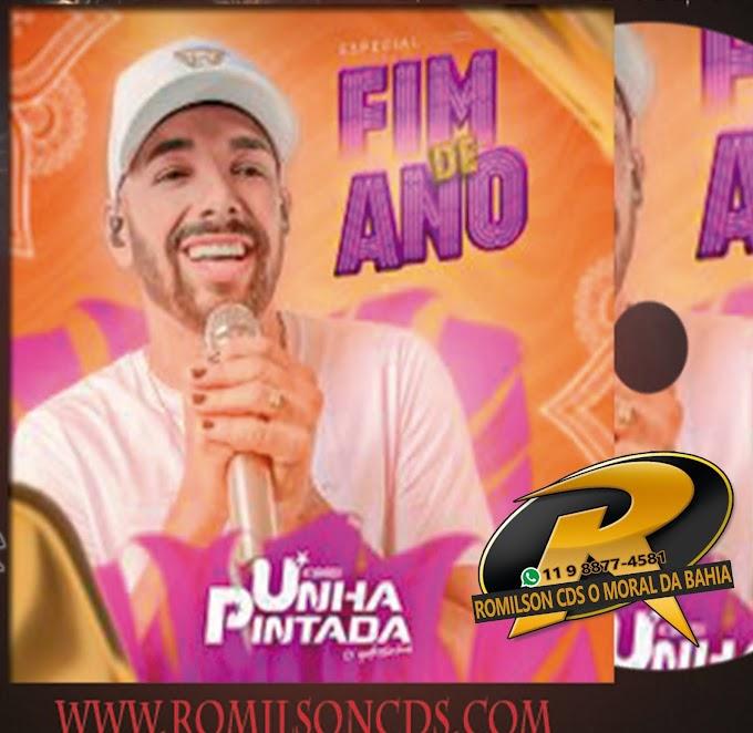 UNHA PINTADA ESPECIAL FIM DE ANO