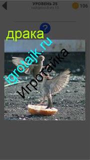 между двумя птицами происходит драка на земле 25 уровень 400 плюс слов 2