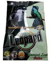 Leopard Rasa Seaweed