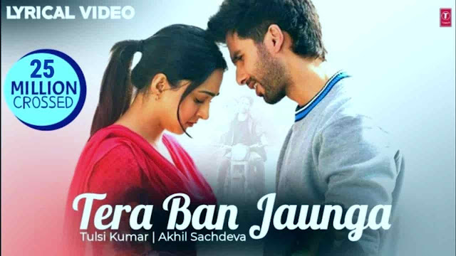 TERA BAN JAUNGA SONG LYRICS KABIR SINGH
