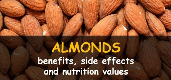 Almonds Lower Cholesterol