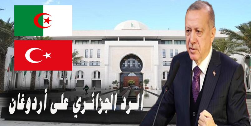صور الجزائر تركيا أردوغان