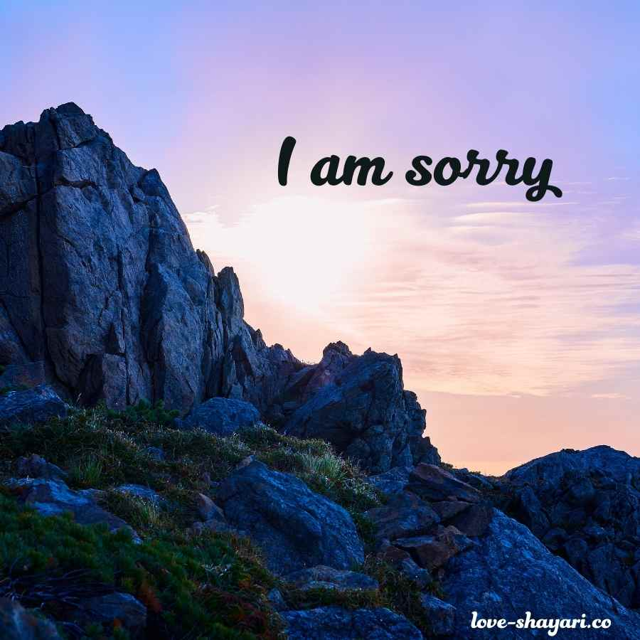 i am sorry brother images