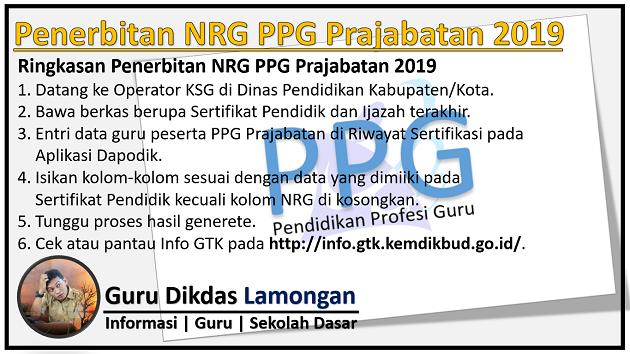 Penerbitan NRG PPG Prajabatan 2019