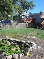 Maintenance,  plant removal, Koi pond maintenance, Water Sanitation, weed removal, pull weeds`